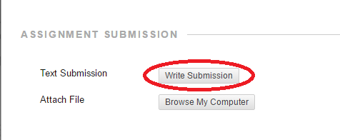 Use the 'Write Submission' button